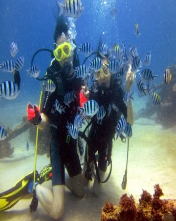 Bali Diving - Get the fantastic and wonderful experience