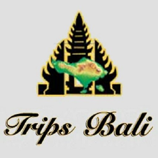 BALI, TRIP, TRIPS, TOUR, TOURS, HOLIDAY, VACATION, SIGHTSEEING
