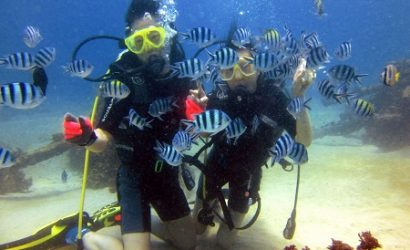 Nusa Dua Diving