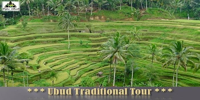 UBUD TRADITIONAL TOUR