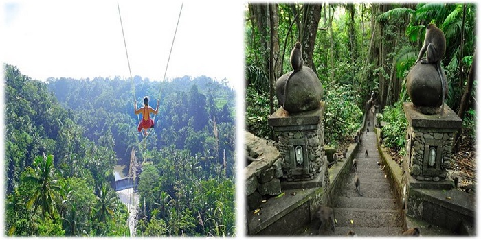 BALI SWING AND UBUD TRADITIONAL TOUR